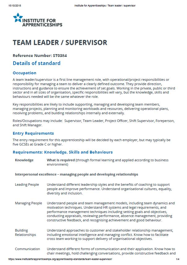 TeamLeaderSupervisor_L3.pdf