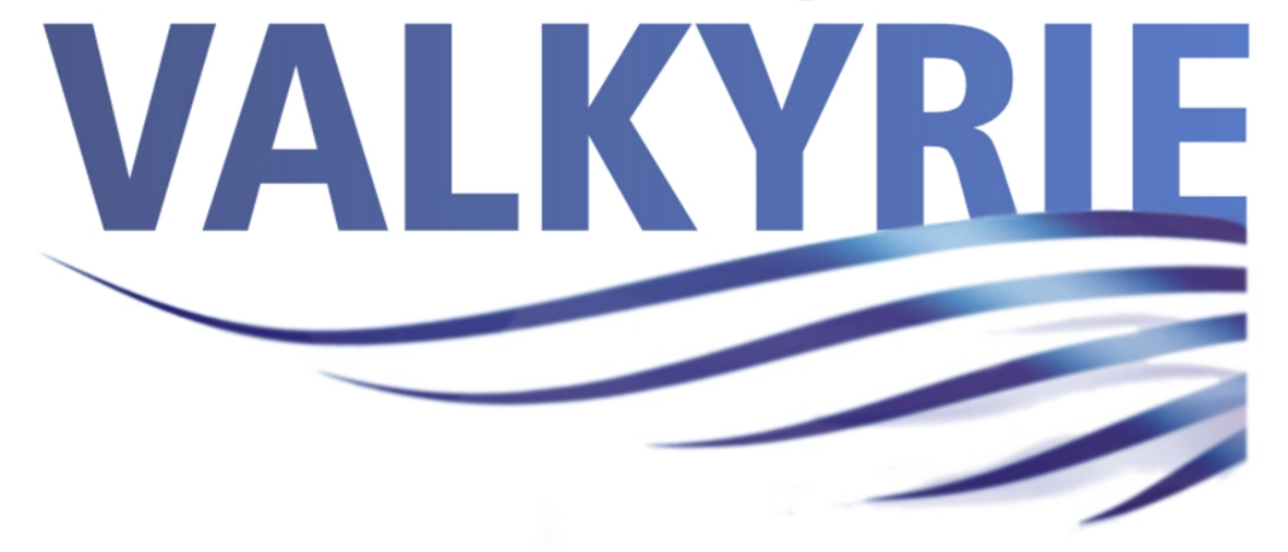 Valkyrie Support Services logo
