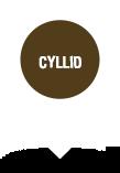 Cyllid